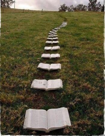 Libros, tramas, nombres